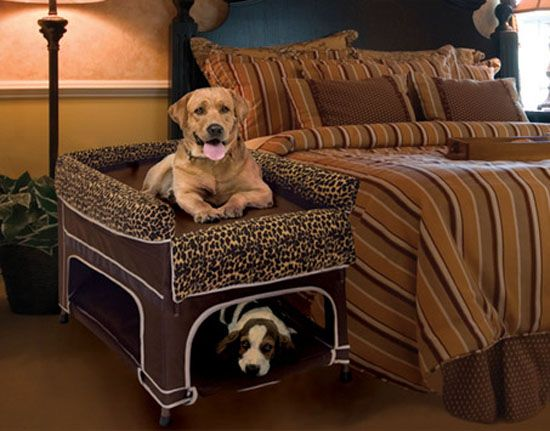 You Can Provide A Separate Sleeping Area For Your Pet With