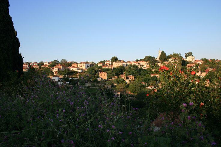 Ο Λαύκος του Νοτίου Πηλίου είναι ένα μοναδικό χωριό που διατηρεί την παραδοσιακή αρχιτεκτονικού του Πηλίου και προσφέρεται για διακοπές όλο το χρόνο.