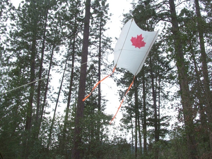 how to make a kite without sticks