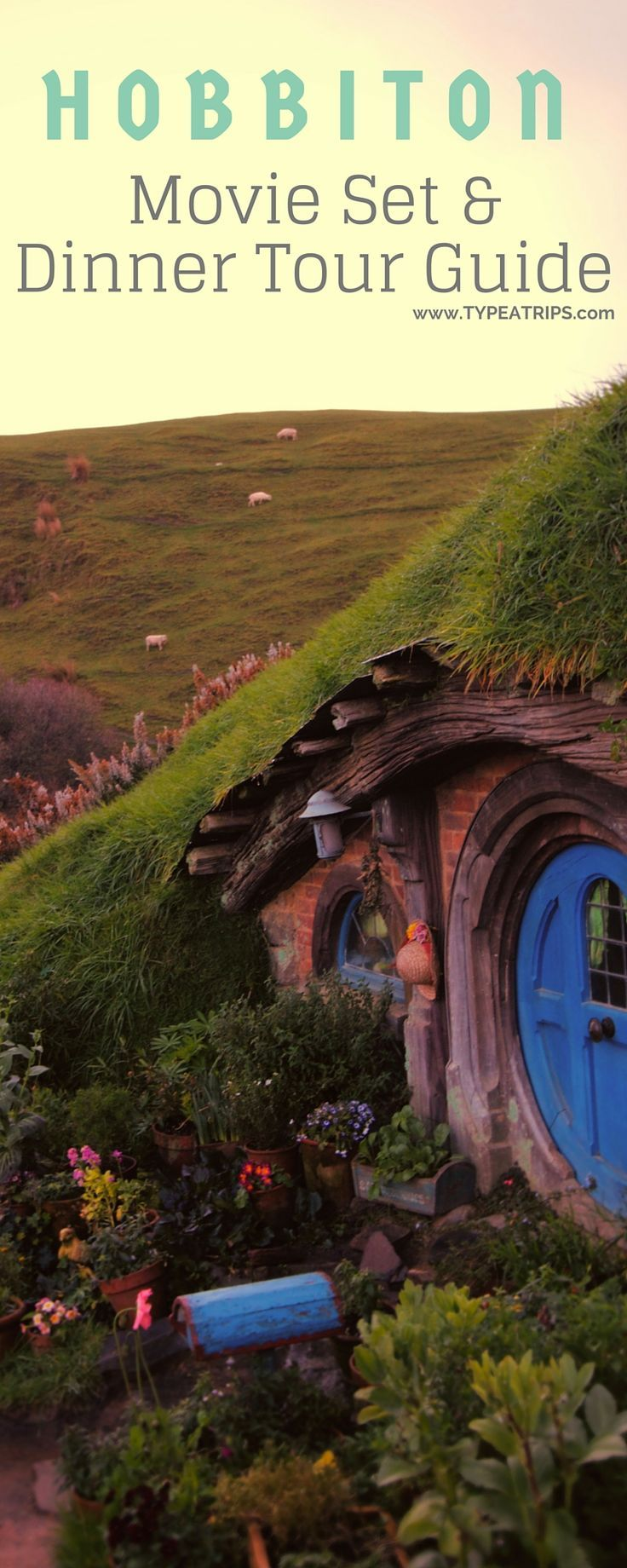 Hobbiton Evening Dinner Tours A Night