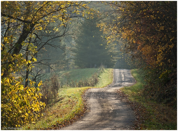 Cicerone Road, Roane County, WV- by Michael Lilly