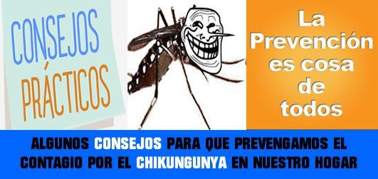 Consejos para prevenir contagio por virus chikungunya