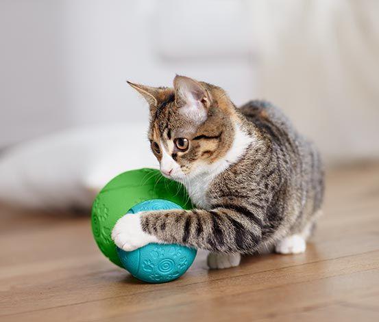 Piłka #snackball, mała #tchibo