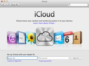 How to Get Your Mac Working With iCloud: The iCloud preferences pane should display the iCloud login, asking for your Apple ID and password.