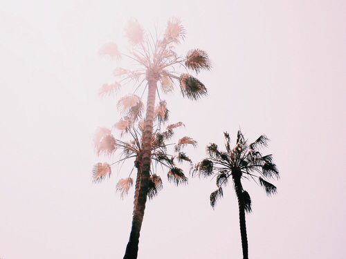 http://weheartit.com/entry/240106455