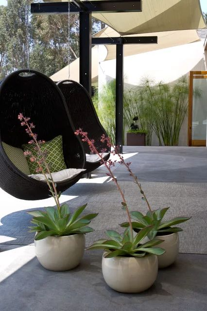 Egg Chairs  https://www.houzz.com/photos/334474/Grounded-Modern-Landscape-Architecture-midcentury-patio-san-diego