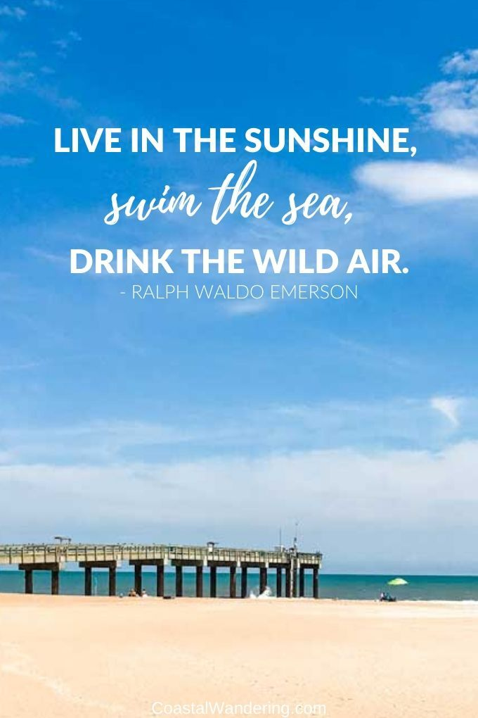 59 Beach Quotes To Brighten Your Day Beach Quotes Captions For Beach Pictures Beach Quotes Funny