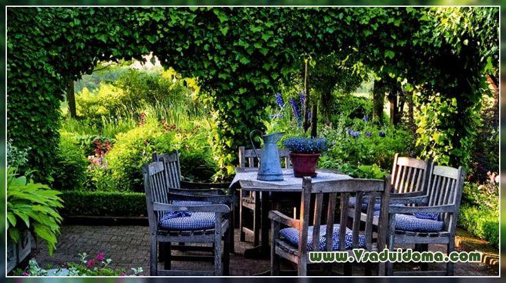 озеленение террасы - Google Search