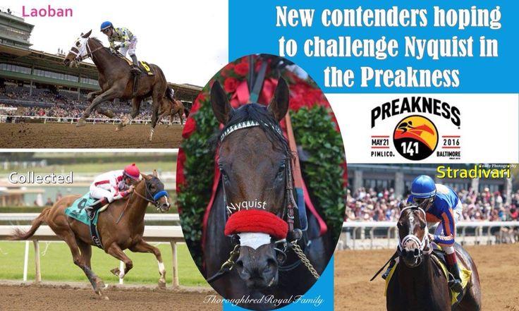 Preakness 2016