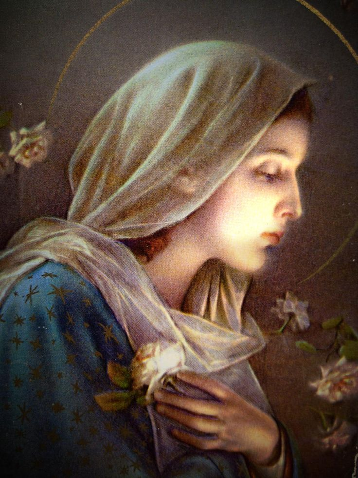 Blessed Virgin Mary                                                                                                                                                                                 More