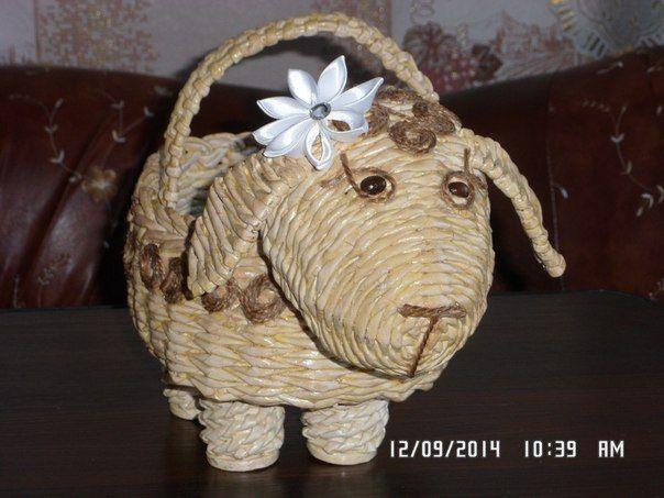 вот такая овца-тяжеловес!