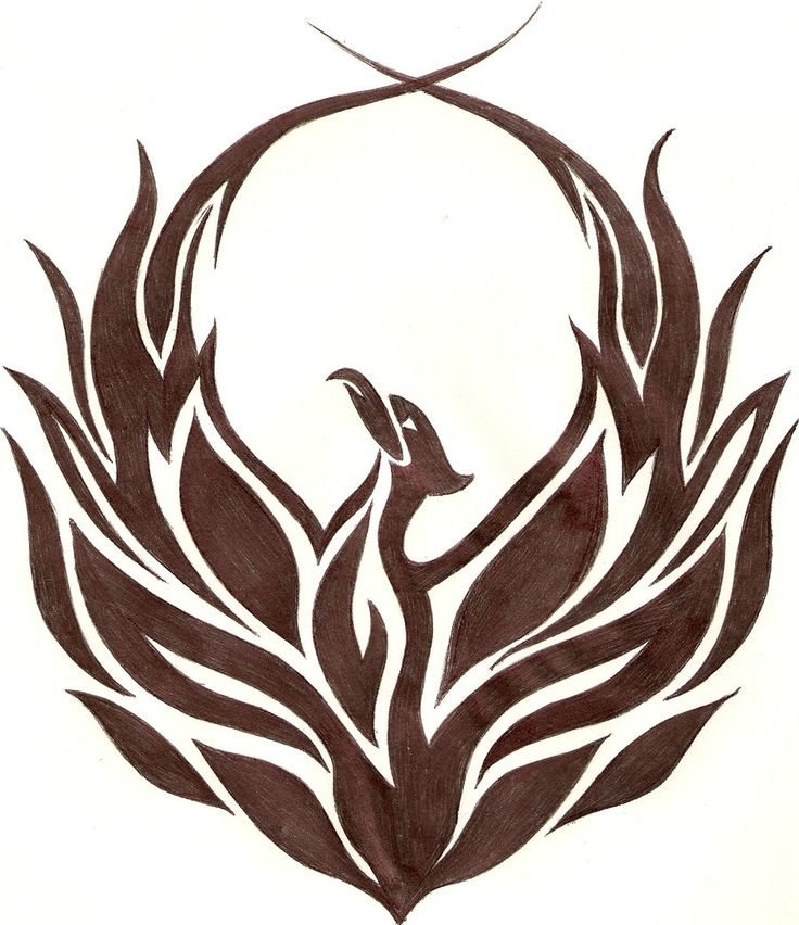 drawing of the phoenix bird | Tribal Phoenix by ~iAdamski on deviantART