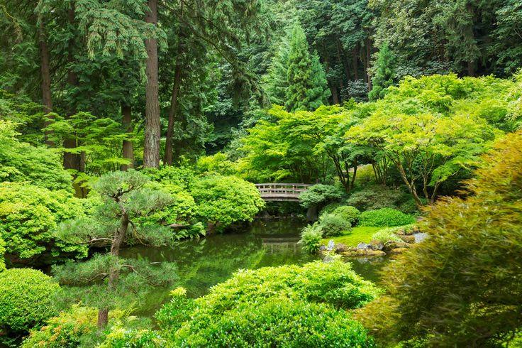 Zen Guided Meditation Talk Down For Sleep - http://www.dailynowandzen.com/zen-guided-meditation-talk-down-for-sleep/