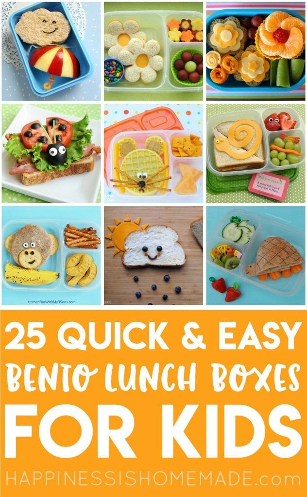These 25+ Easy Bento Lunch Box Ideas for Kids are …