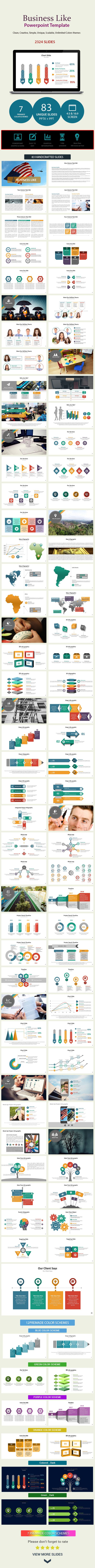 Business Like Presentation Template (PowerPoint Templates)