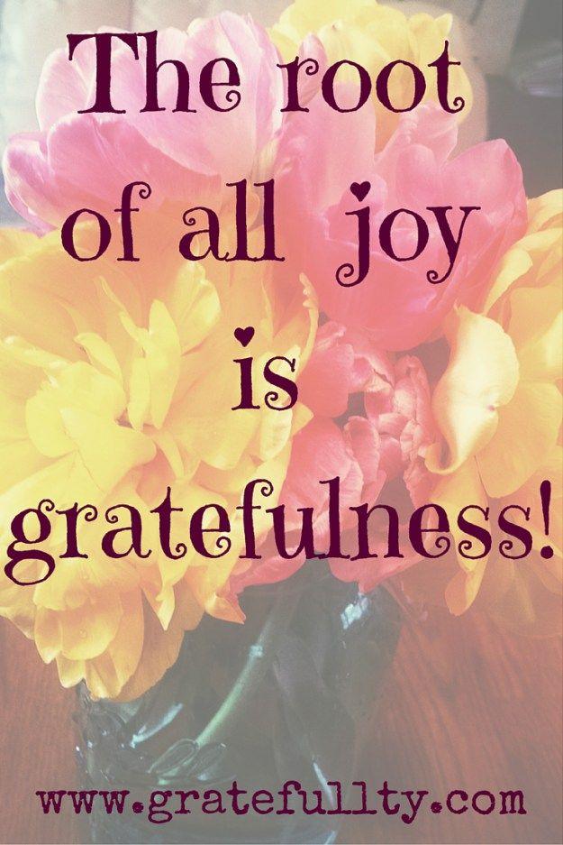 e2202102ca57c9d55e5e224c9232e6f5--gratitude-jar-attitude-of-gratitude.jpg