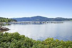 Norway is definitely my Happy Place. This is a view of Drammen, it's on a fjord. Exquisite!