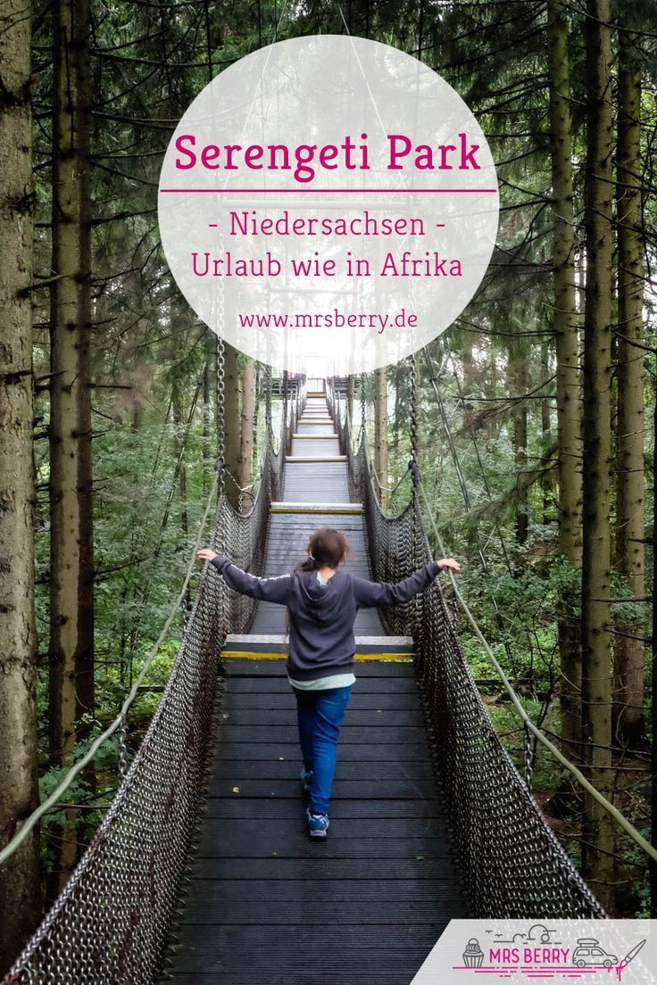 On safari in Lower Saxony – Serengeti Park Hodenhagen