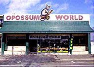 Opossum World, Napier, New Zealand. A unique shopping and education experience!