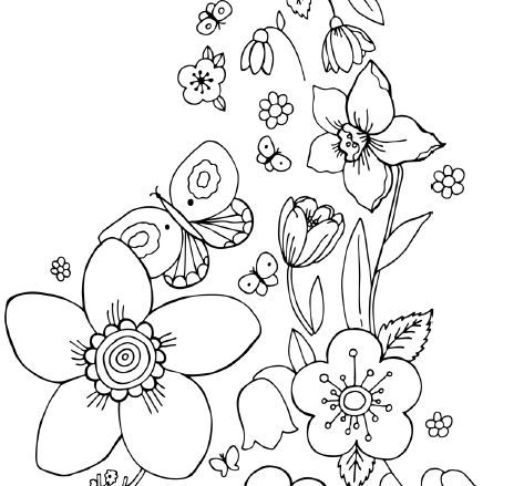 Astonishing Printable Coloring Pages Flowers And Butterflies