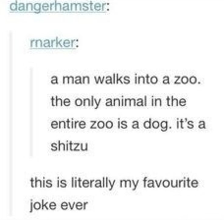 """17 Jokes That Will Make You Say, """"That's Stupid,"""" Then Laugh"""
