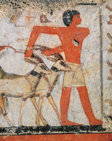 Painting depicting man holding gazelles by the horns, from the Tomb of…