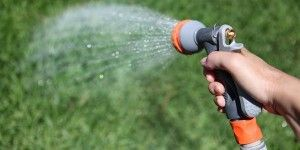 Gardening Defensively for the Long, Dry, Hot Summer