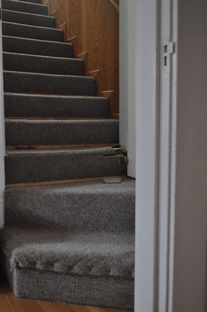 Best 12 Best Coridor Stair Carpet Images On Pinterest Stair 400 x 300