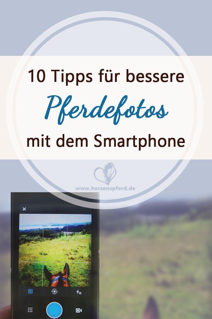 10 Tipps für bessere Pferdefotos mit dem Smartphone. (Mix Animals)