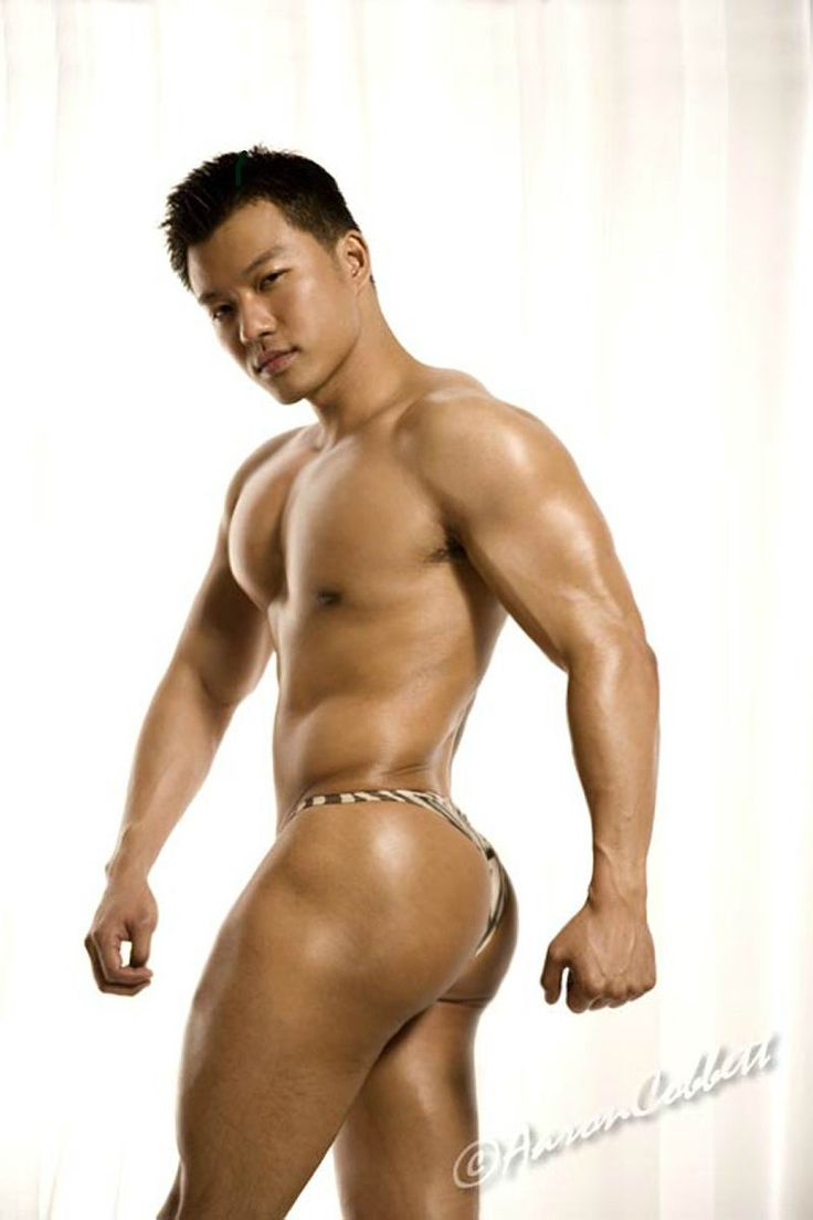 gay muscle domination