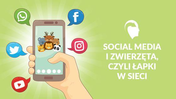 zwierzęta w social mediach