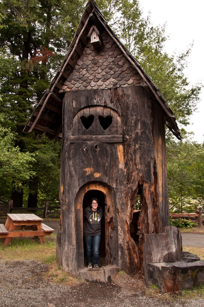 Welcome to my tree house in California! :D