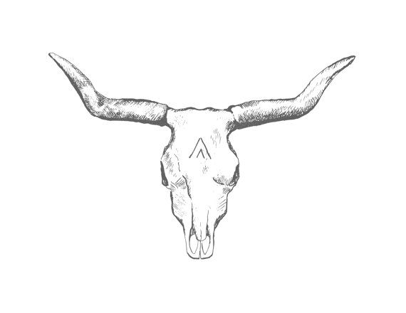 longhorn skull print $14