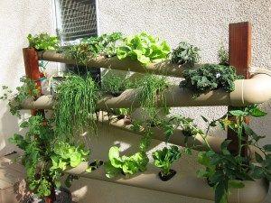 Vertical PVC hydroponic Garden with garden pump.