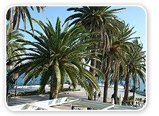 Nerja Villa Rentals: Rent Holiday Villas and apartments in Nerja, Andalucia, Costa del Sol, Spain #houses #or #apartments #for #rent http://attorney.nef2.com/nerja-villa-rentals-rent-holiday-villas-and-apartments-in-nerja-andalucia-costa-del-sol-spain-houses-or-apartments-for-rent/  #apartments in spain # Welcome From detached villas to apartments in the beautiful town of Nerja on the Costa del Sol. We have a wide range of one, two, three, four and five bedroom villas and apartments in Nerja…