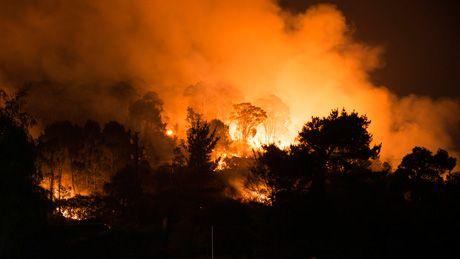 Bushfires - ABC Splash