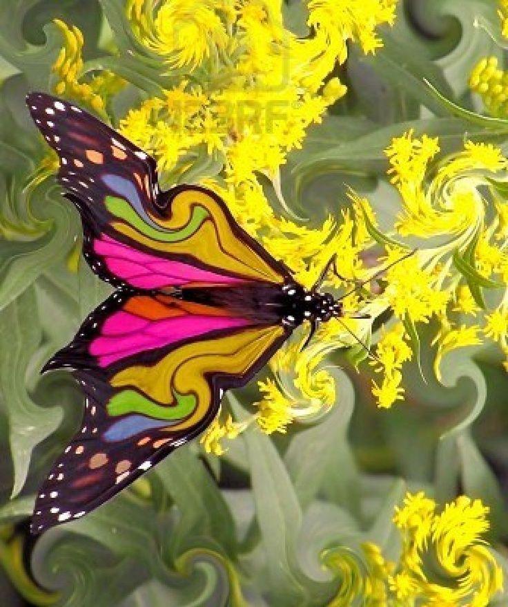 butterfly beauty  – Wonderful world