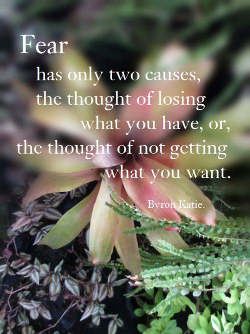 Fear has only two causes; The thought of losing what you have, or the thought of not getting what you want. (Byron Katie)