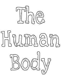 *FREE* Human Body Lapbook and Unit Study