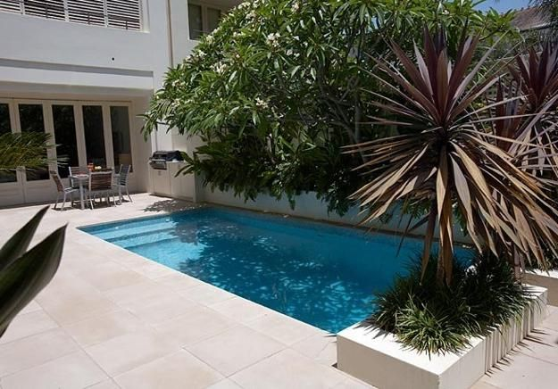 small backyard design with swimming pool and plants