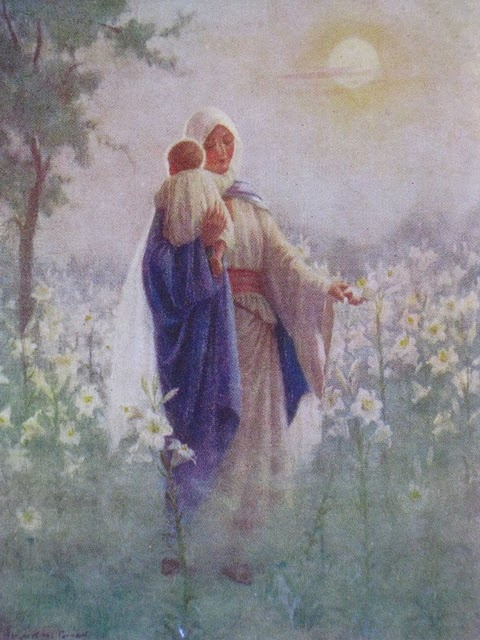 Lilies of the field. Margaret Tarrant.