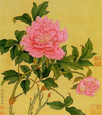 In China, the most important country of peony origins, many splendid pictures have been painted from the Tang Dynasty up to the present time. This is a painting by Chian Ting-hsi (1669 - 1732) of the Ching Dynasty.