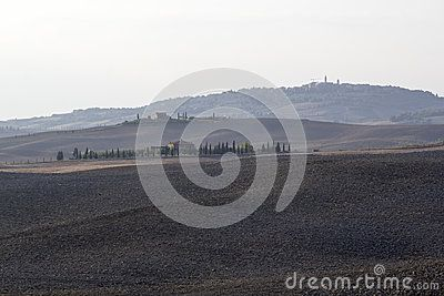 Fields In Val D Orcia Tuscany