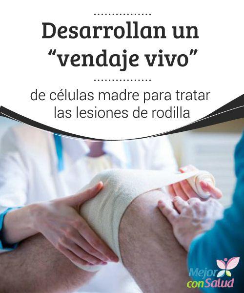 """Desarrollan un """"vendaje vivo"""" de células madre para tratar las lesiones de rodilla   La lesión de meniscos es uno de los problemas de rodilla más comunes en todo el mundo. De hecho, tan solo en Europa y Estados Unidos se registran más de un millón de casos cada año."""