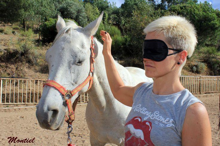 Espejo. Coaching con caballos. Liderazgo y Equilibrio.