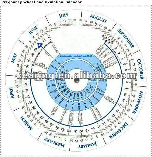 #Ovulation Calendar, #Pregnancy Wheel chart, #Ovulation Calendar for Pregnancy