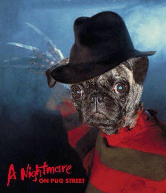 nightmare on pug street puglife puglove - Pugs Halloween Costumes
