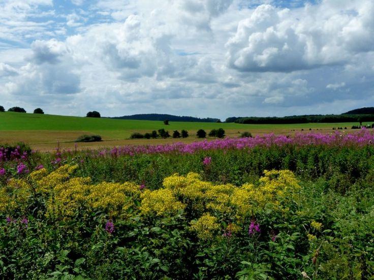 August im Westerwald