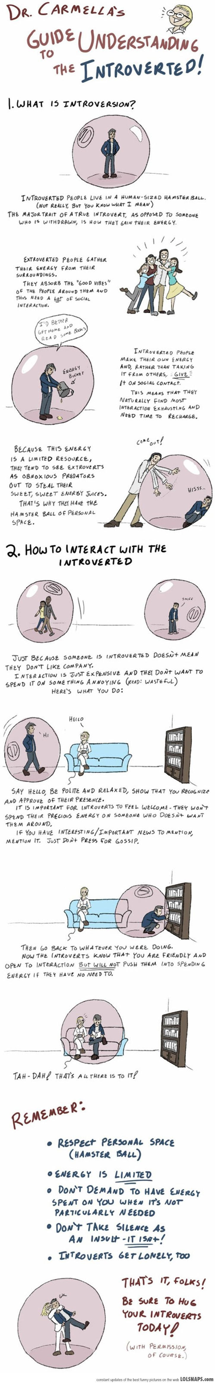 Guide To Understanding The Introverted...