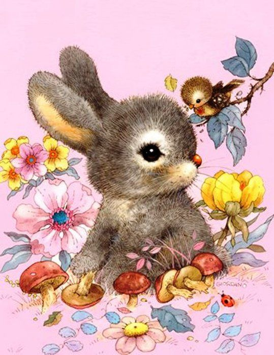 Картинки открытки зайцы, детские картинки